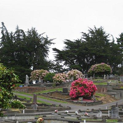 Ferndale - historic cemetery