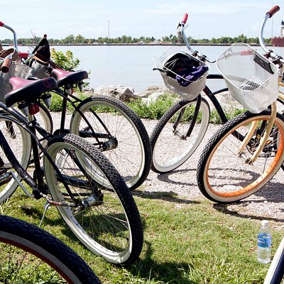 Our bikes, as we were sitting on the levee