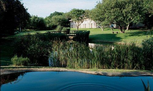 Mopani Wing Gardens