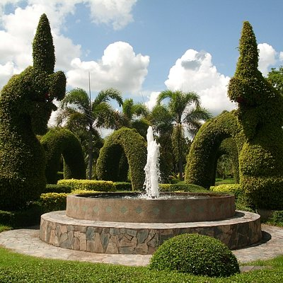 Topiary dragon