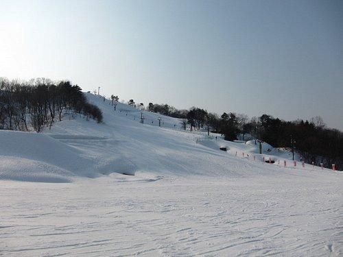 下部からみたスキー場