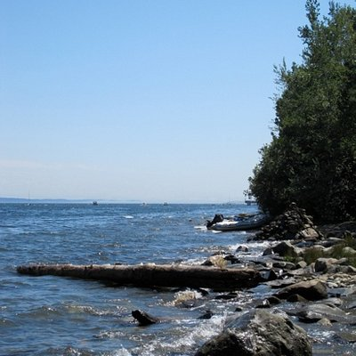 View of the bay from the picnic area