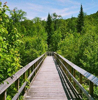 Awenda Provincial Park, Beaver Pond Trail