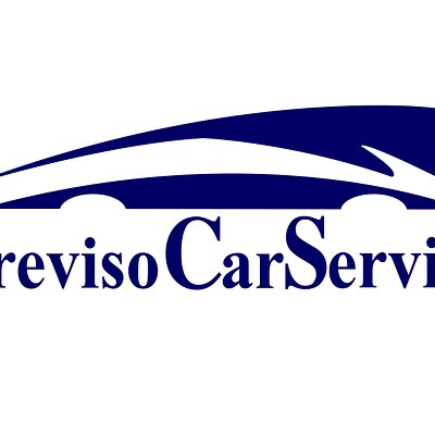 rent a car/minivan with driver