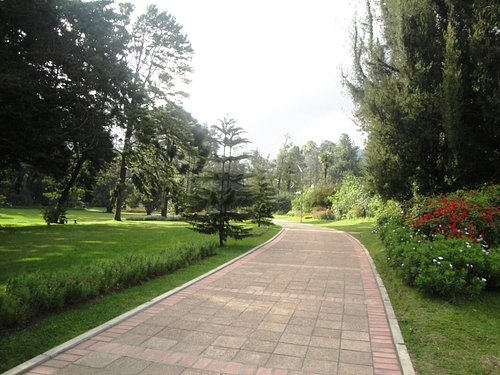 A neat section of the park.