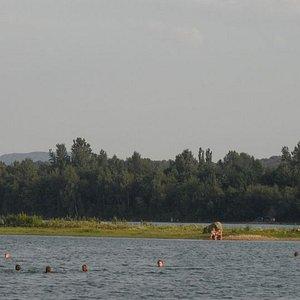 Blick vom Ufer auf die kleine Insel im Badesee Birkwitz