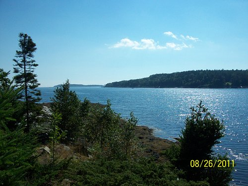 View of Linekin Bay from Cabbage Island