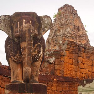 遺跡を守る象