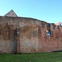 Speyer, Synagoge