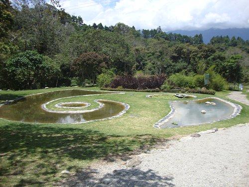 Laguna principal Jardin Botanico de Merida