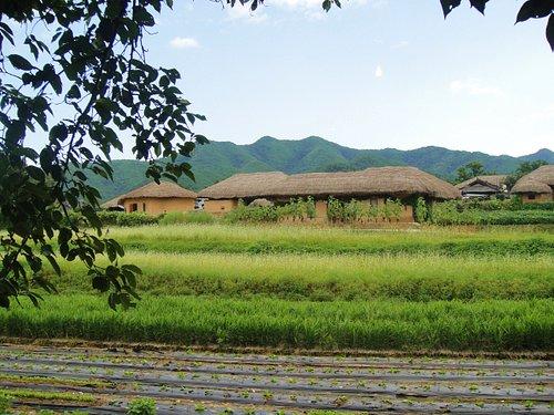 藁ぶきの家々