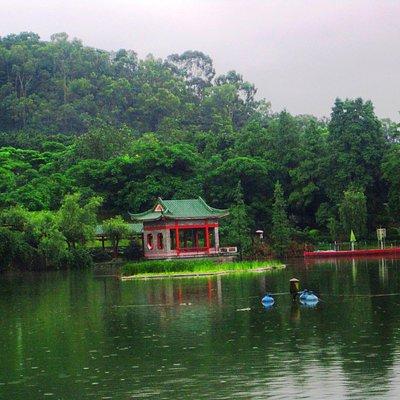 Qifeng Park -1