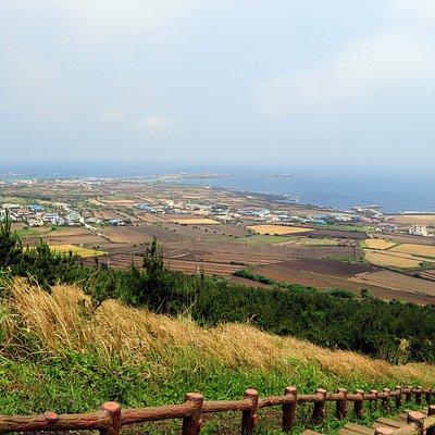 Farms on the island