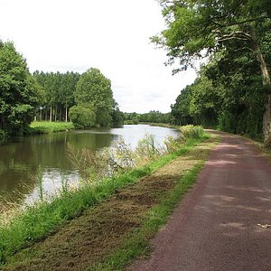 The well made path is suitable for walking and cycling