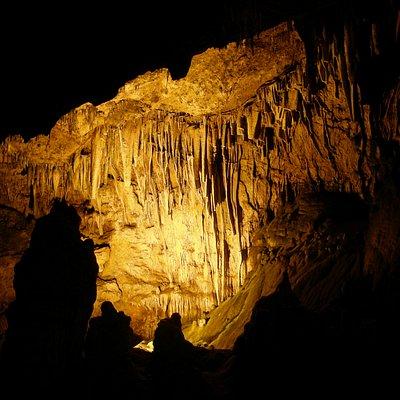 Dim Cavern Magarasi, Alanya