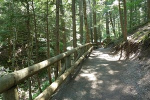 Another hiking trail.