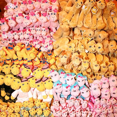 Our Many Soft Toys!
