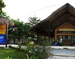 Freedive Gili and Gili Yoga Shop