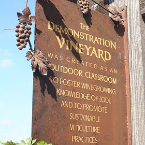 A sign at the entrance to the educational vineyard.
