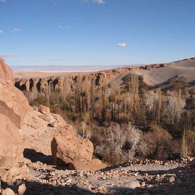 Vista del Valle desde arriba