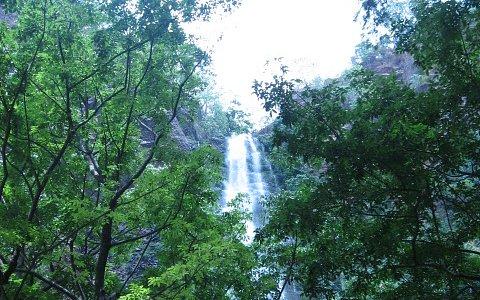 Wli Falls - The Source