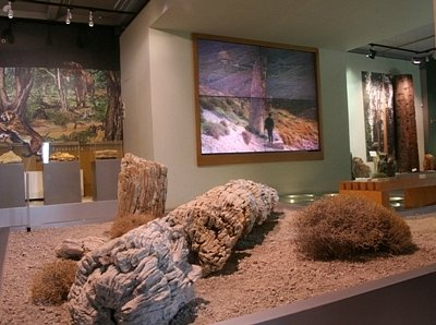 Provided by: Natural History Museum of the Lesvos Petrified Forest