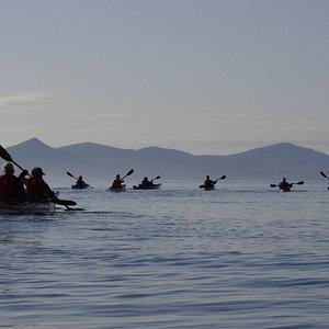 Sea kayaking with Kingfisher Wilderness Adventures