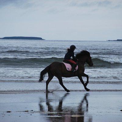 Having fun riding on the beach