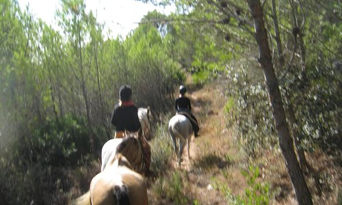 The best way to see the world..from the back of a horse!