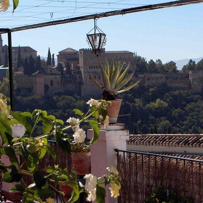 Vista terraza Carmen de las Cuevas