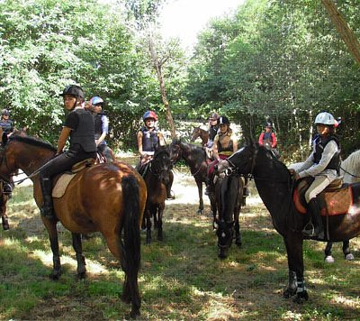 Our Horse riding tours