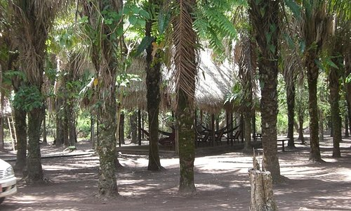 the gardens and hammocks in Bala Tours Pampas Lodge