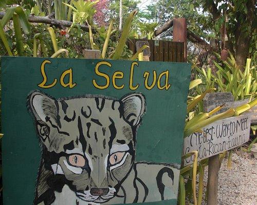 Gate to La Selva