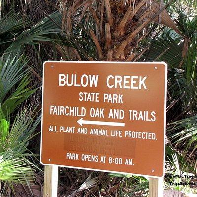 Bulow Creek by PMAcontact