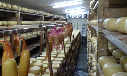 Inside the cheese store