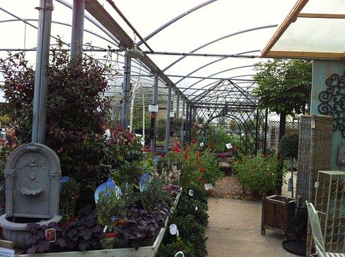 Herb Farm Indoor Nursery