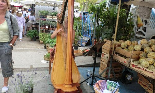 Listening to the live harp in the market