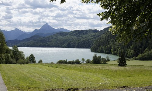 Froggensee