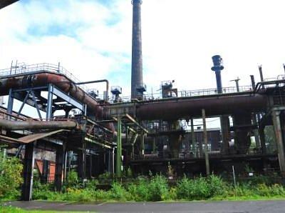 Natur erobert Industriegelände