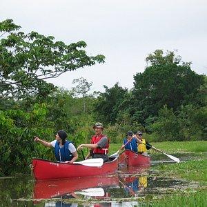 Caño Negro by Canoe