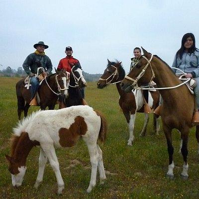 Paseos a Caballo, Cabalgatas, Turismo Rural en Algarrobo (Litoral de Los Poetas) / Horseback Rid