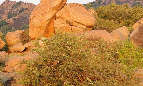 Rock formation in the Daroji Bear Sanctuary