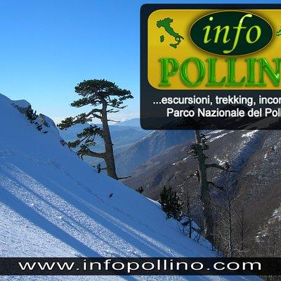 Infopollino: Trekking e Incoming