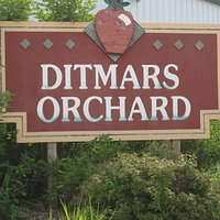 Ditmars Orchard