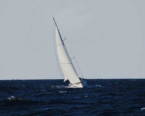 corsi di vela: bolina