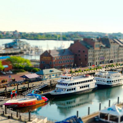 Boston Harbor Cruises at Long Wharf