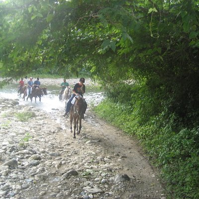 Rancho Pinto Horseback riding