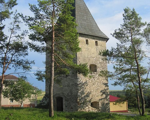Kryvche Tower with Roof June 2011