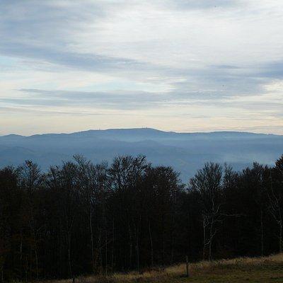 Blick nach Süden auf die weißen Spitzen der Alpen