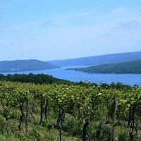 Many of the region's overlook the shores of Seneca, Cayuga, Keuka and Canandaigua Lakes.
